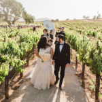 Newlyweds lead their guests on a parade through the vines accompanied by a brass band at this destination wedding in wine country.